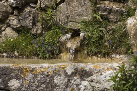vattenkälla