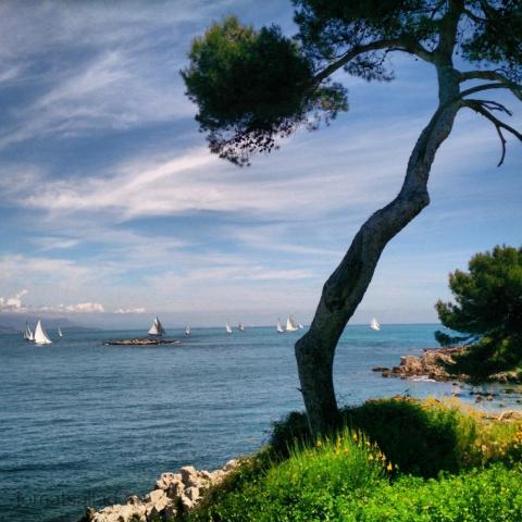 Côte d\'Azur