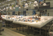 Fiskdisk Carrefour