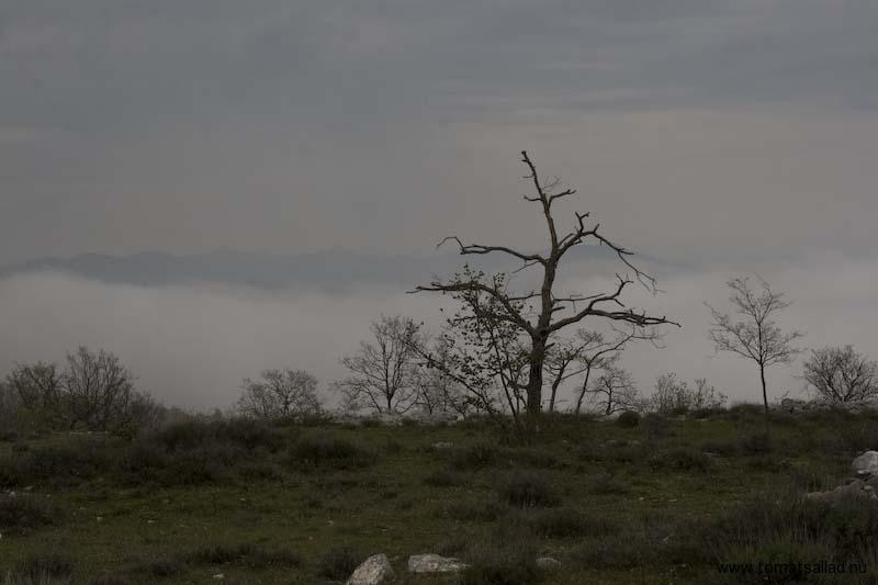 Låga moln i Frankrike