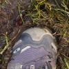 trasiga skor (eller finskor) göre sig icke besvär