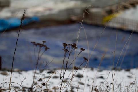 Några fröställningar på kanten till Skanskas bygge