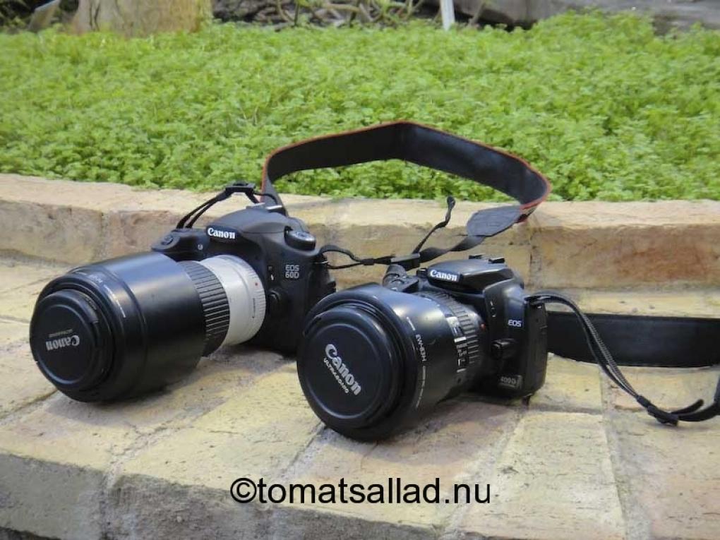 Canon 400D och 60D