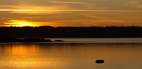 soluppgång i Åsa, Halland
