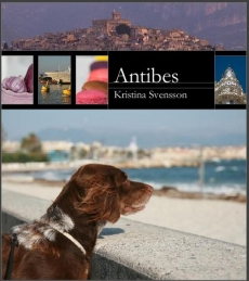 antibe-12-april-hund