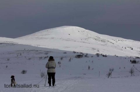 vitt fjäll med vit skidåkare