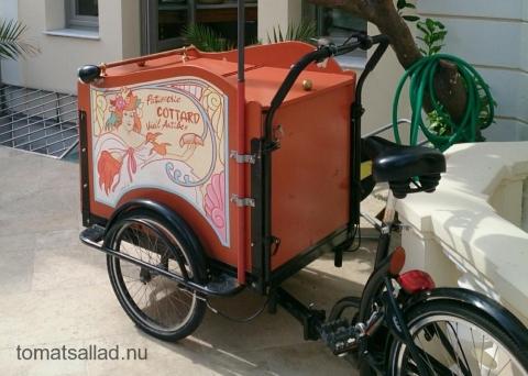 Cottard cykel