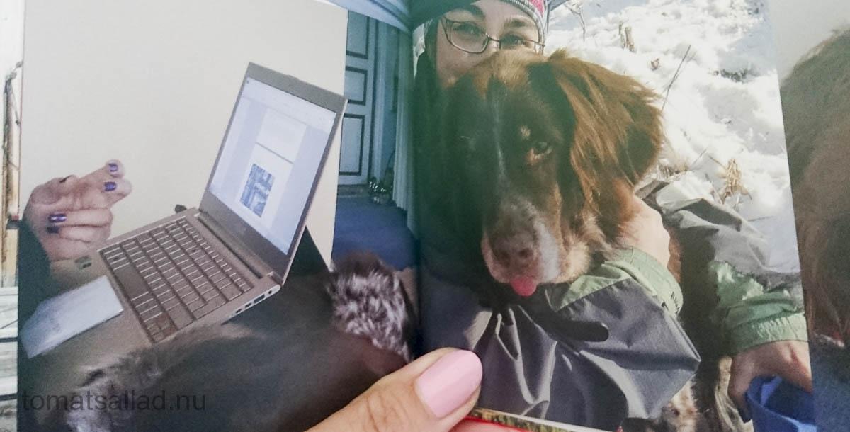 boken-om-hunden-48