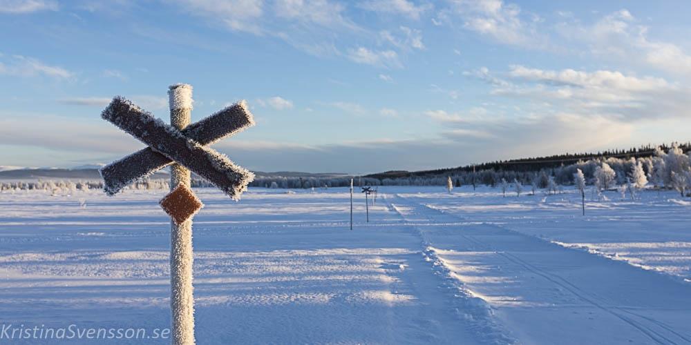 rimfrost-0662