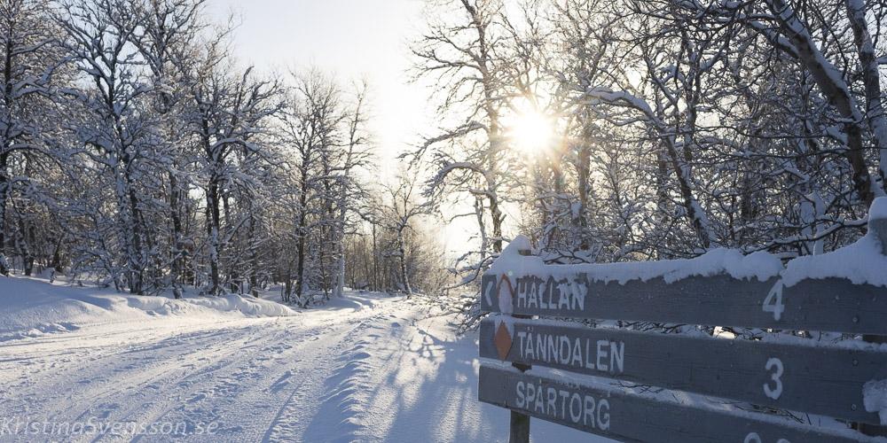 tanndalen-2109
