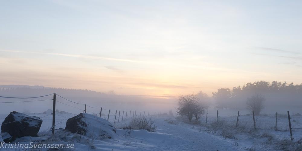 hagby-ekhagar-januari-1478