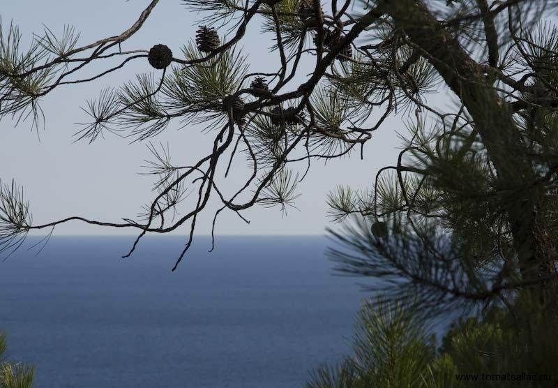 Medelhavet sett från GR51