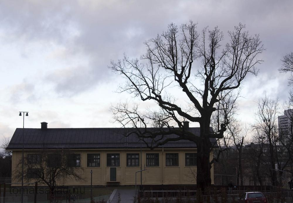 hornsberg-6032