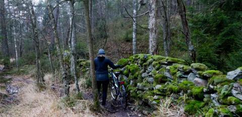 cykelpromenad i naturreservat