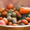tomater till salu