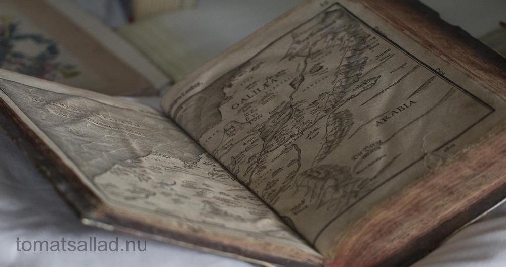 nynas-slott-biblioteket-5832