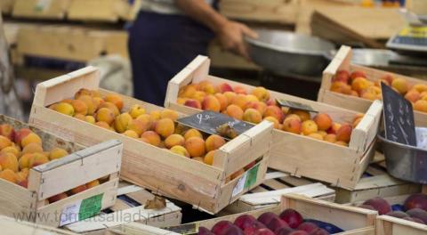 lådor med aprikoser på marknaden i Aix en Provence