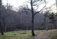 arkils-tingstad-0001