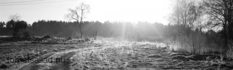 dimman borta