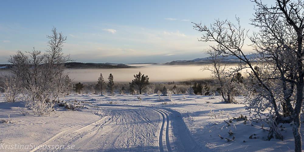 rimfrost-0643