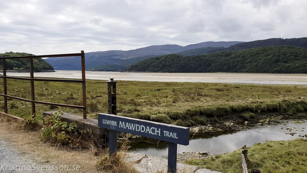 mawddach-trail-08