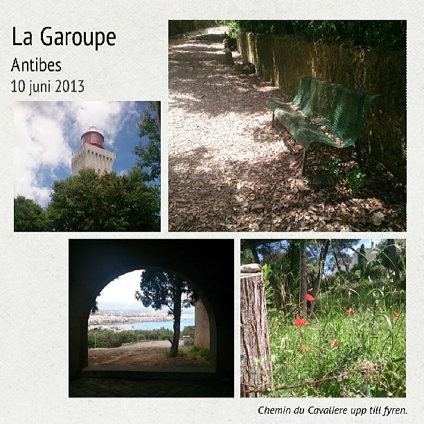 La Garoupe collage