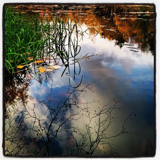 Blixtrade med speglingar. Den hör bilden har jag klippt rätt ordentligt, fanns en horisont och träd också men blev bättre med bara vattenspeglingen. #Mölndal #safjället #damm #spegling #vatten #vattenytan