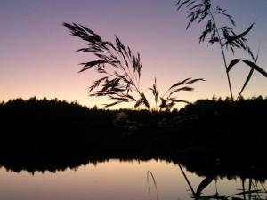 Slänger säkerhets-plugin i sjön så att min blogg blir lite mer lätthackad