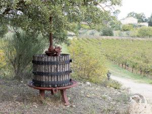 Vingårdsbesök i Provence